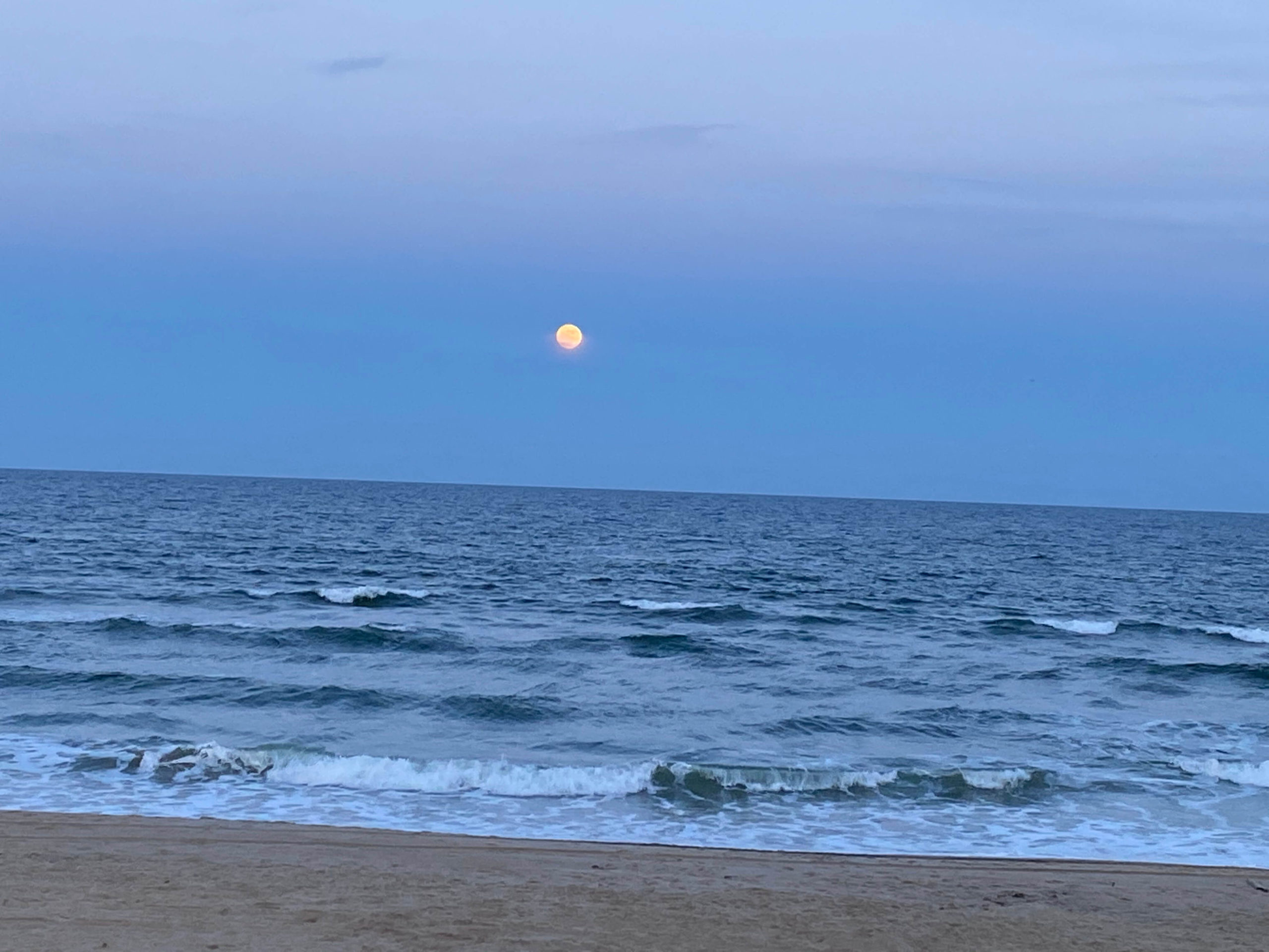 The Outer Banks is not just a Summer Destination!